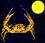 Mondkalender / Mondrhythmus: Vollmond im Sternzeichen Krebs