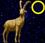 Mondkalender / Mondrhythmus: Neumond im Sternzeichen Steinbock