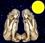 Mondkalender: Zwilling im Vollmond